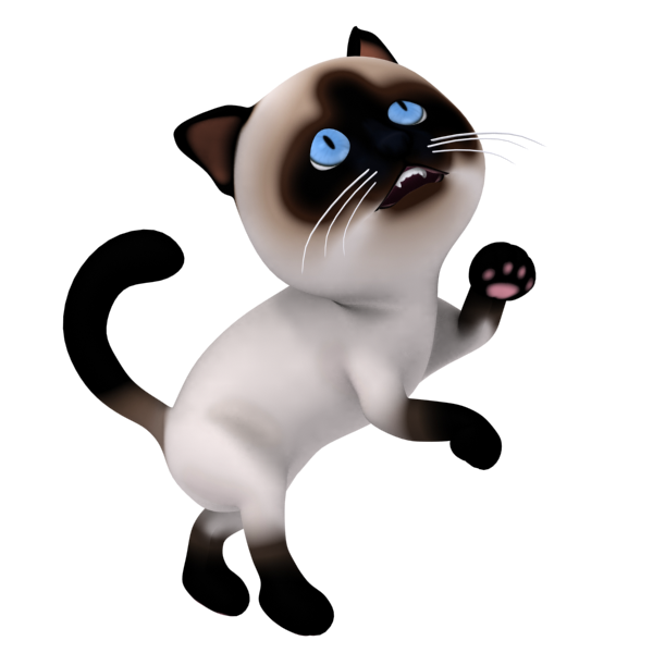 3D clipart cat For PNG  from 3D