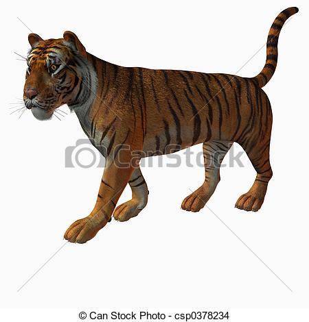 3D clipart tiger Drawing Tiger Illustration Render 3D
