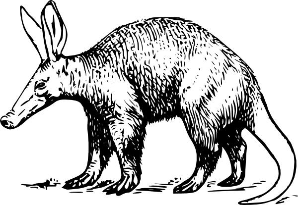 Aardvark clipart  office clip clip art