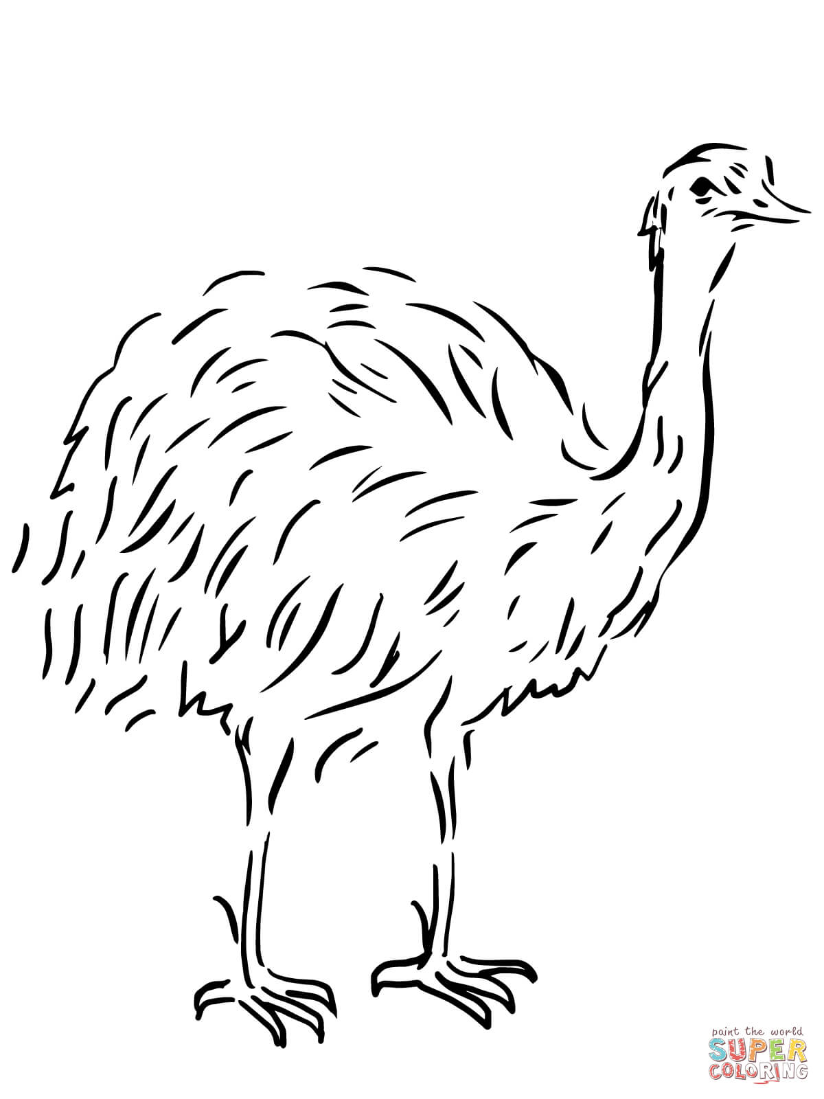 Aboriginal clipart emu Emu Coloring pages Pages Emu