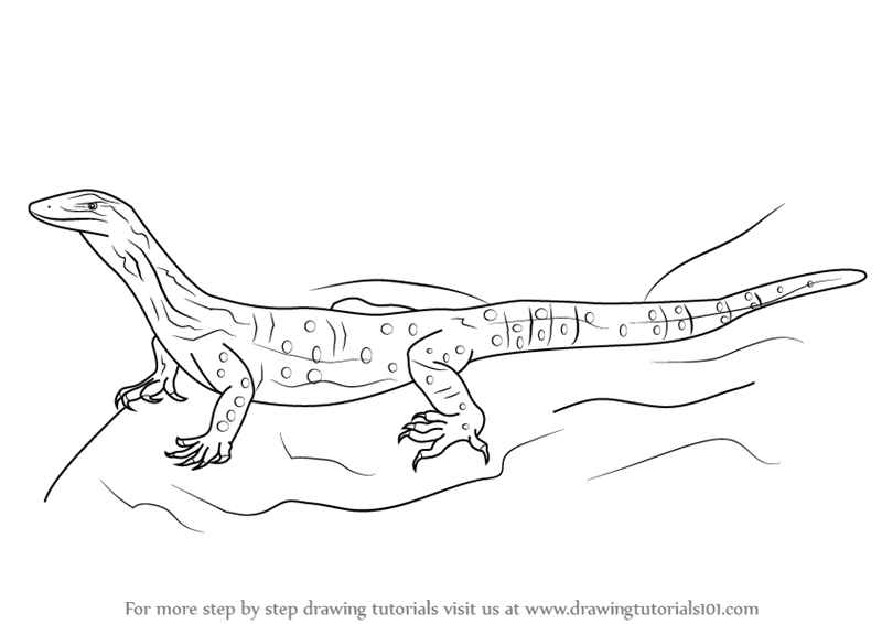 Aborigines clipart goanna Step (Reptiles) to Draw Goanna