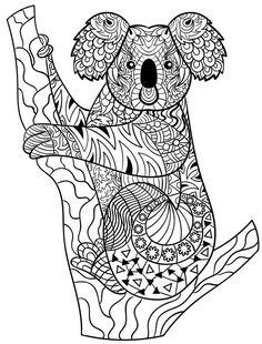 Super Koala Aboriginal  drawings