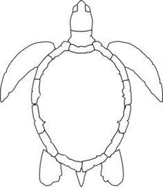 Aborigines clipart turtle #10
