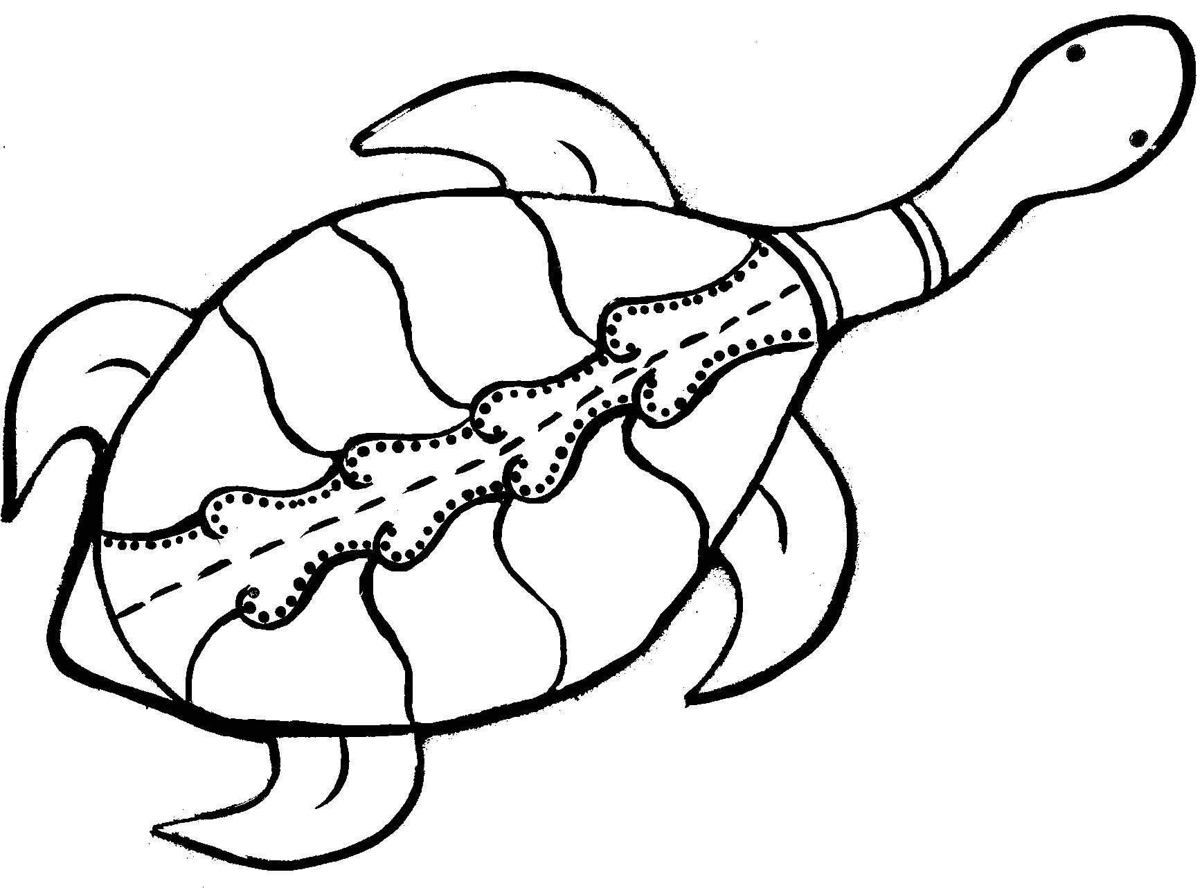 Aborigines clipart turtle #11