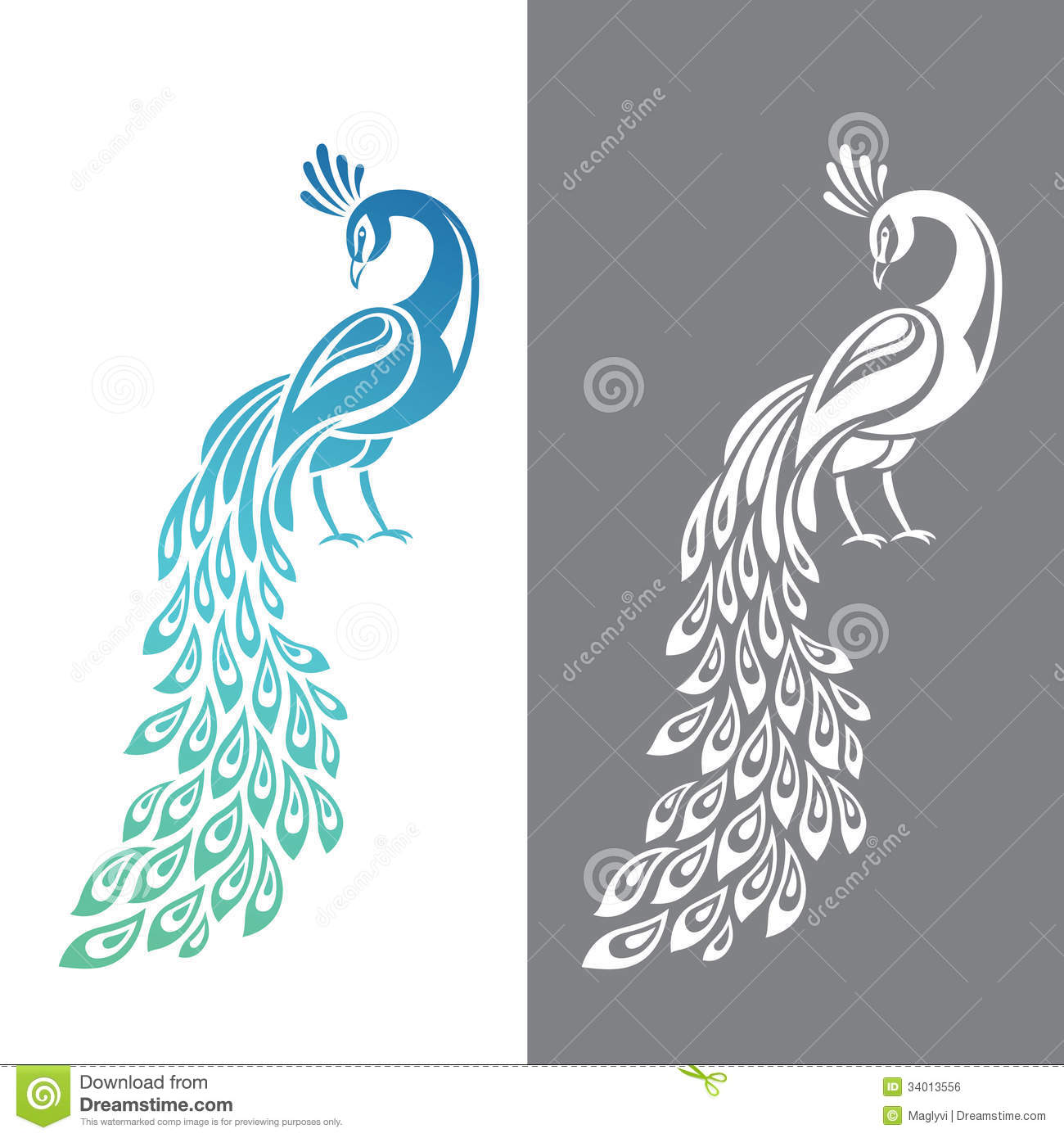 Peacock clipart vector Photo Image: Stock Feather Free
