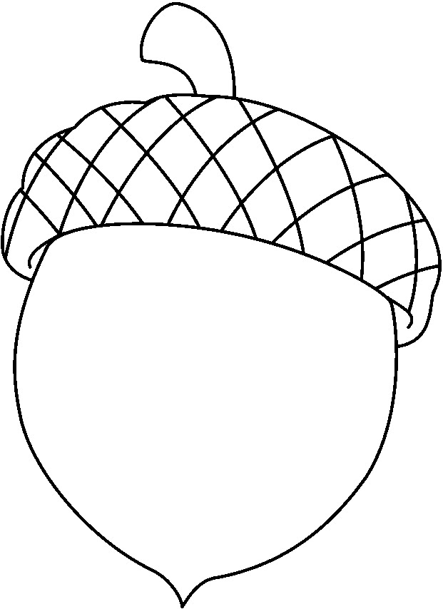 Acorn clipart Best com Clipart Clipartion Acorn