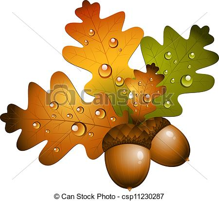 Acorn clipart seed Oak clipart and seed Clipground