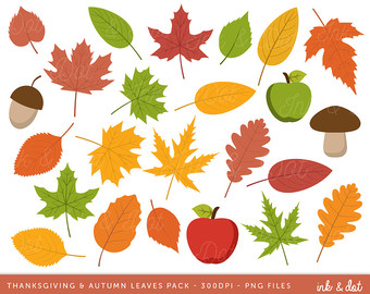 Acorn clipart thanksgiving PDF Download Kit Fall Apples