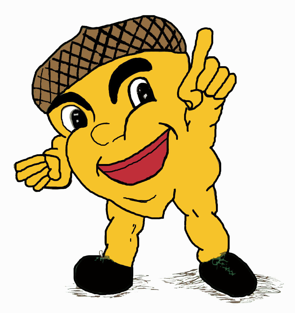 Acorn clipart yellow CA Morgan Art  Download