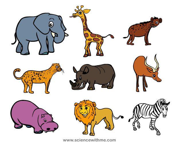 Africa clipart animal science Science of Me! safari Safari