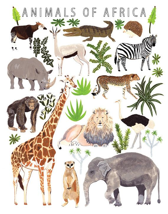 Africa clipart kid adventure On Animals images print Unit