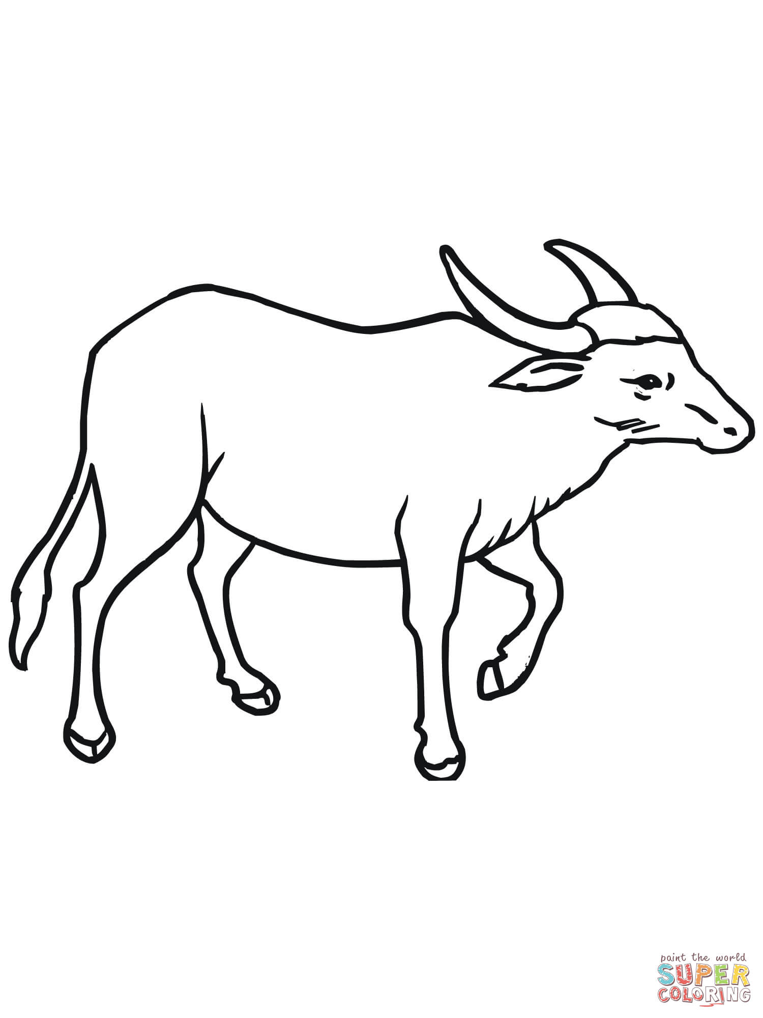 African Buffalo clipart coloring page Wild Asian Buffalo coloring pages