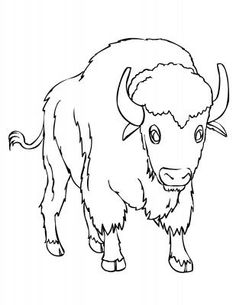 African Buffalo clipart coloring page Find this Babylon and Pages