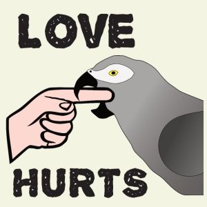 African Grey Parrot clipart i love you An the African am parrot