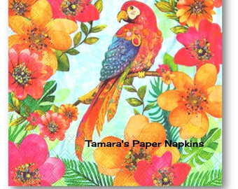 African Grey Parrot clipart papercraft Parrot Inch PARROT Paper Hibiscus