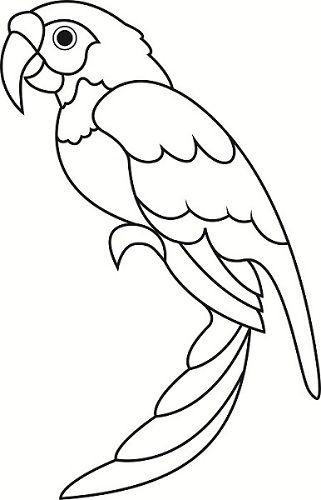 African Grey Parrot clipart papercraft DarkWolfDesign Parrot Pinterest by Papercraft