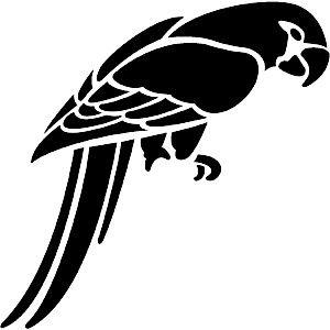 African Grey Parrot clipart parrot head Parrot Parrot Download svg Grey