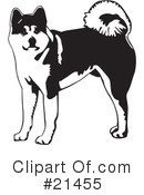 Akita clipart puppy Dogs (RF) Japanese Free Clipart