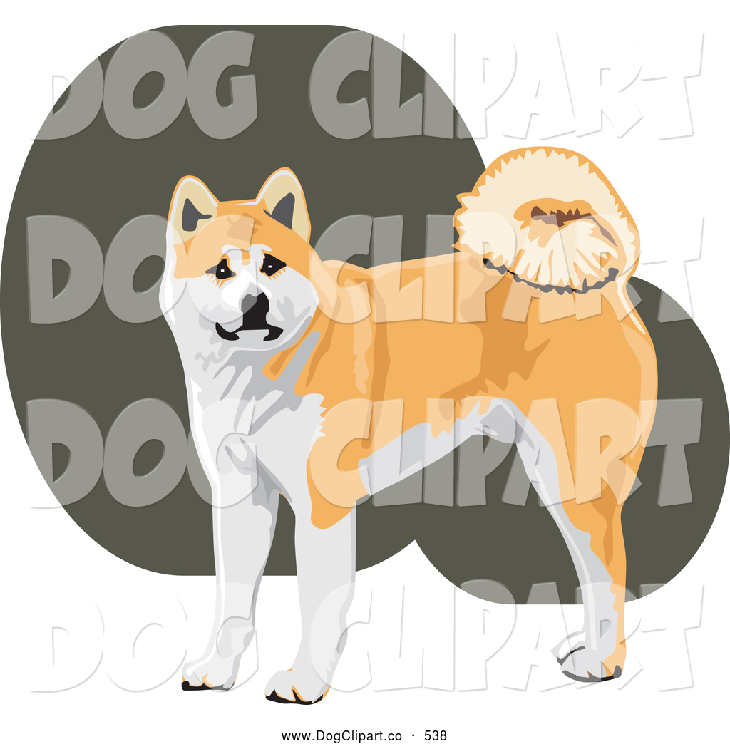 Akita clipart puppy Japanese Download Akita collection clipart