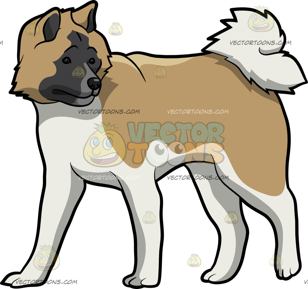 Akita clipart puppy A Clipart white Dog: and