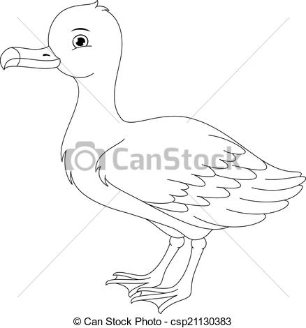 Brds clipart albatross The coloring live page
