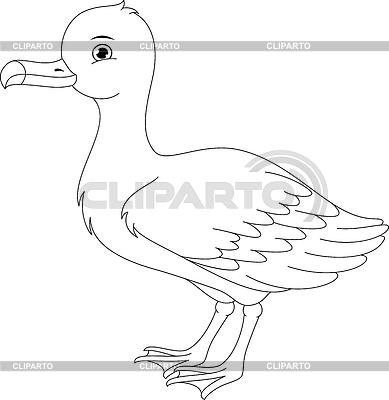 Albatross clipart Coloring CLIPARTO EPS Platinka and