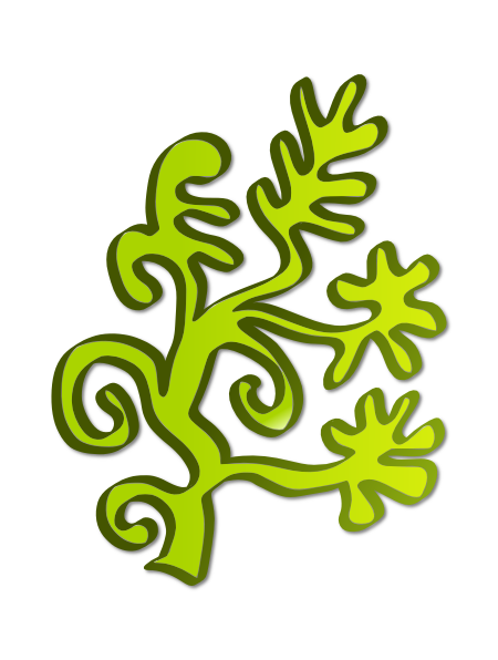 Algae clipart Clipart algae%20clipart Panda 20clipart Images