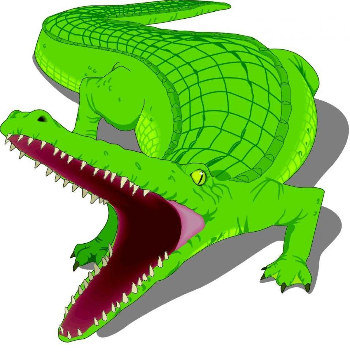 Alligator clipart green object  clipart  alligator