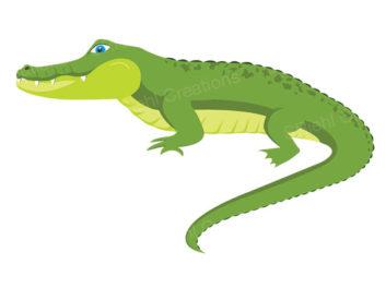 Alligator clipart love Clip 2145 ClipartWar Clipart Images