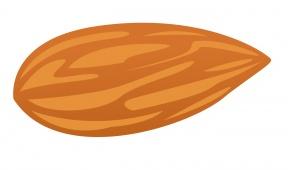 Almond clipart vector Cliparts Eggs Zone Cliparts Almond