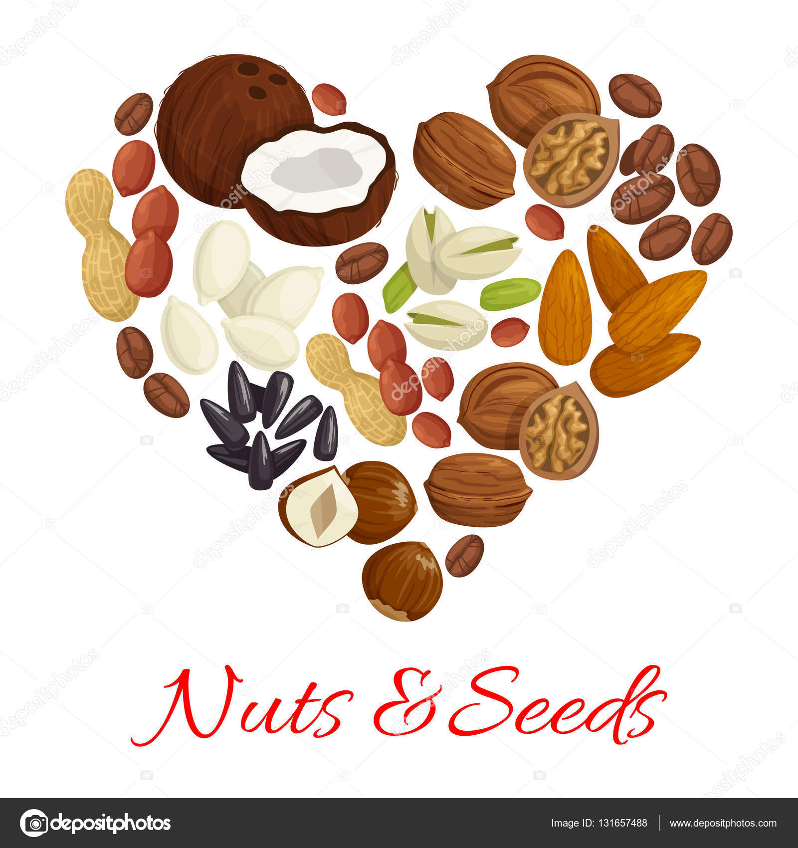 Almond clipart nut seed Of seed nut Vector for