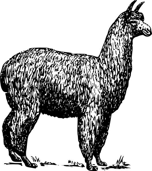 Alpaca clipart black and white Art ( art svg Open