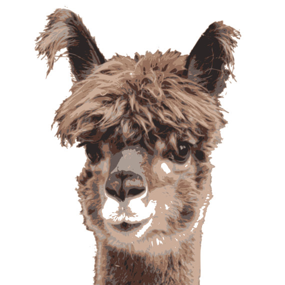 Alpaca clipart fur PNG Llama Art Llama is