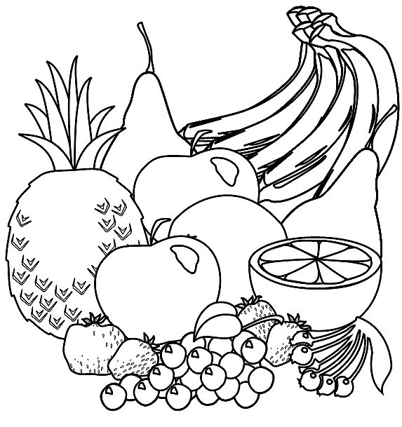 Amd clipart fruit Plants and best this How