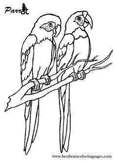 Amd clipart parrot  Kids Pinterest Free DarkWolfDesign