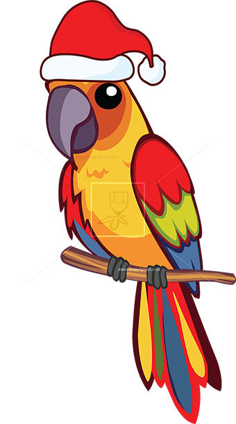 Amd clipart parrot Vector  with hat com