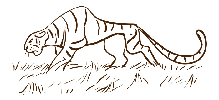 Amd clipart tiger Clipart Fineartpixel Tiger Illustrations Vector