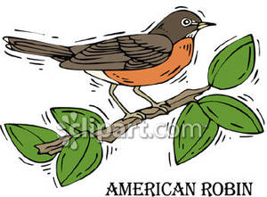 American Robin clipart Art Free Art American Download