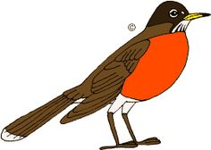 American Robin clipart #7 Download clipart American clipart