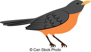 Drawn robin American Download clipart Download American