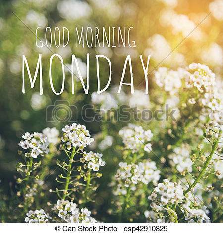 Amonday clipart good morning Of Photo morning collection Good