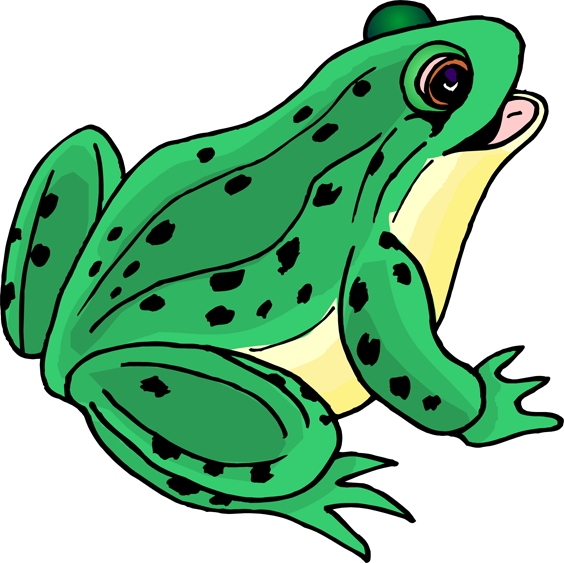 Toad clipart Clip amphibian art NiceClipart clipart