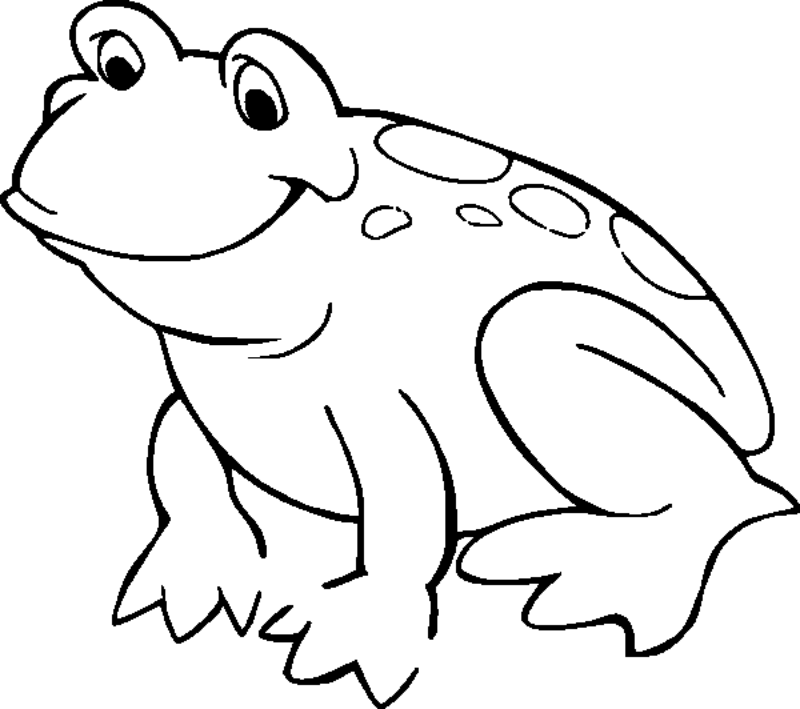 Amphibian clipart coloring page Clipart Panda Free Images Frog