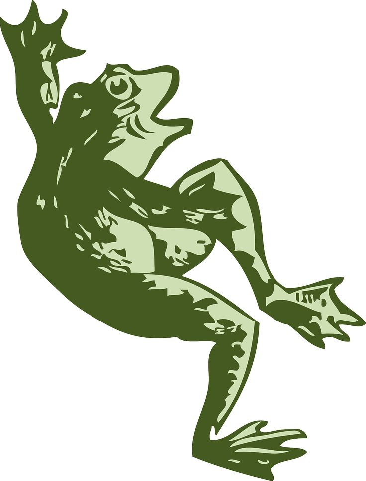 Tree Frog clipart creature #2