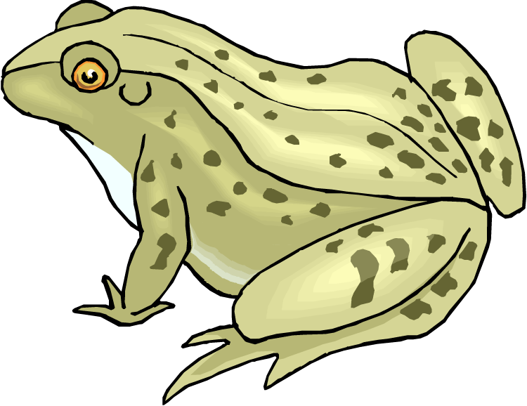 Amphibian clipart spotted Green Toad and Spotted Clipart