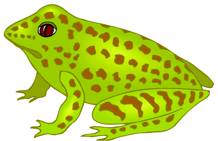 Amphibian clipart spotted Green Free and Spotted Clipart