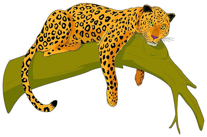 Jaguar clipart Pictures Images Clipart Clipart Free