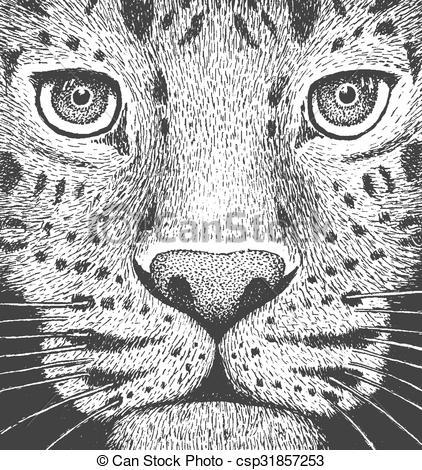 Amur Leopard clipart black and white Clipart Engraving Engraving Leopard Leopard
