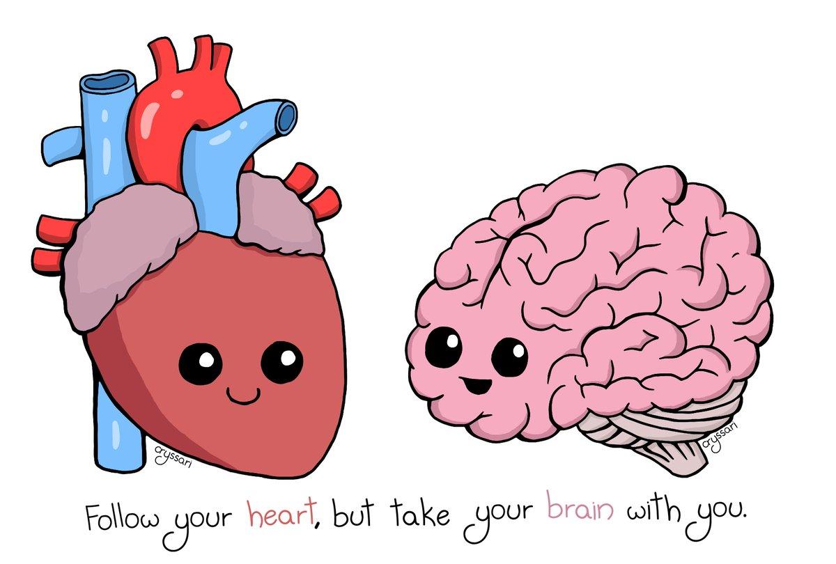 Anatomy clipart cute #3