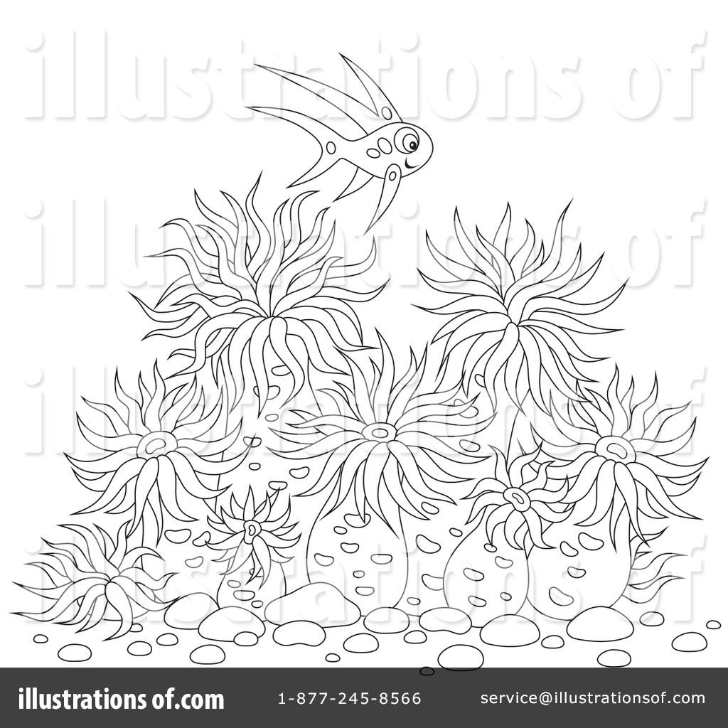 Anemone clipart black sea Bannykh Illustration Royalty Clipart Sea